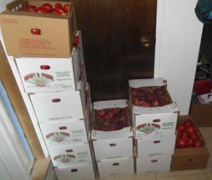 produce01