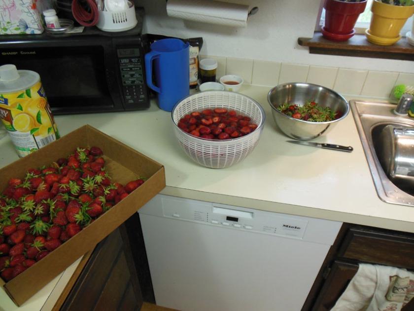 strawberries02